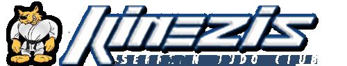 Kinezis logo