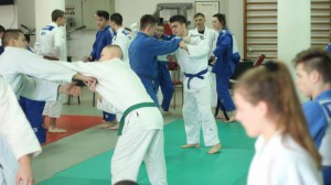 "Judo kamp ""Play for inclusion"""
